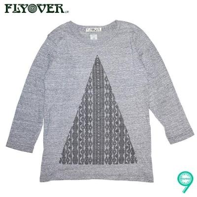 FLYOVER 幾何学