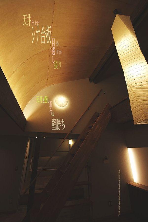 天井:木仕上03-シナ合板