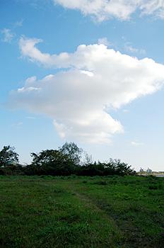雲のカタチが・・・