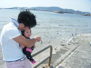 カモメと娘と俺