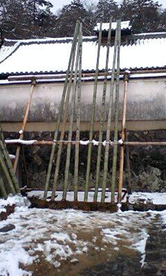 松明用の竹