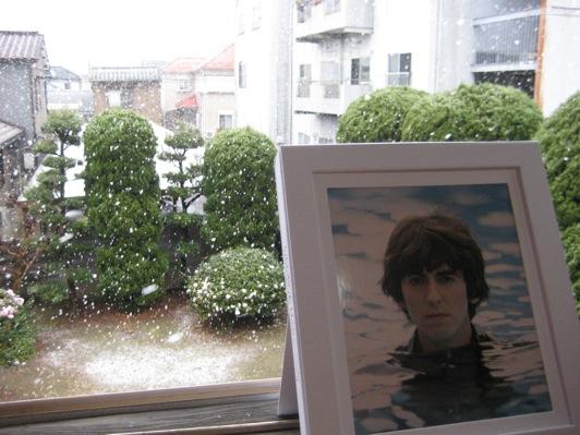 ジョージと雪