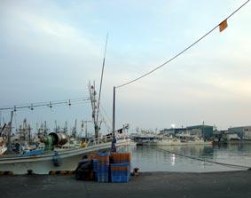 目の前の漁港