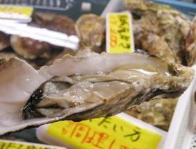 魚市場のカキ