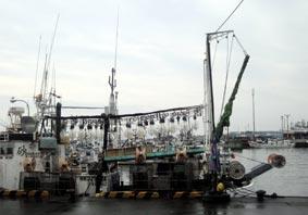 マルトマ前の港