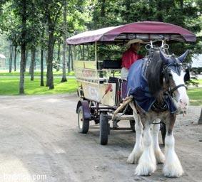 ホースパークの馬車