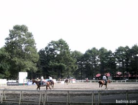 ホースパークの乗馬練習
