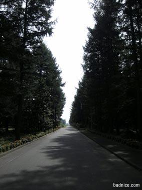 エンドルフィンの道