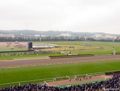 2012年天皇賞曇り競馬場