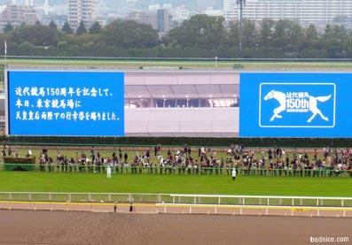 2012年天覧競馬