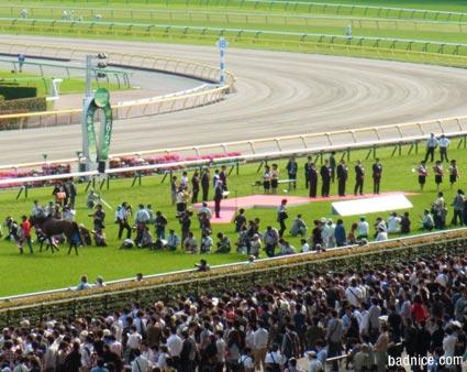 2013安田記念表彰式