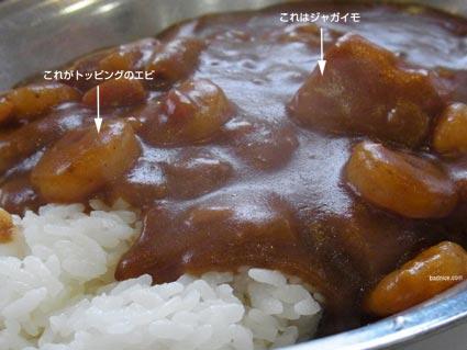 インディアン野菜カレーアップ