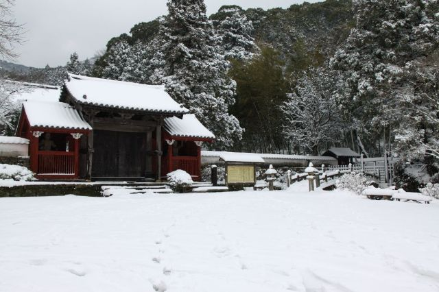 雪の万松院1