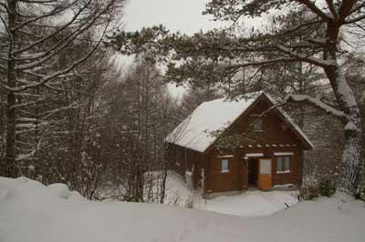 山のアトリエは小さなログハウス。