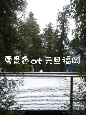 福岡 2009 雪景色