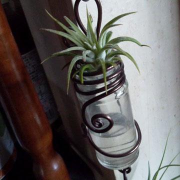 スパイスボトルの空き瓶/ワイヤー一輪挿し