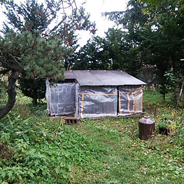あひる小屋にビニール巻きました。