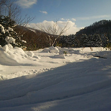 雪かきbefore