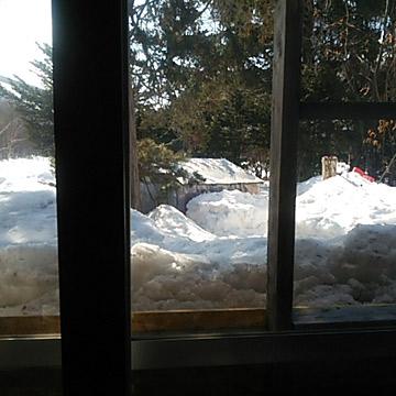 家の中からあひる小屋が見えます。
