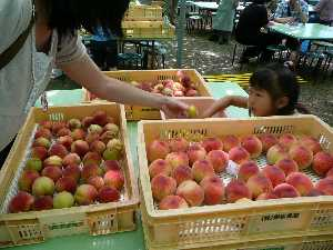 果物だもの