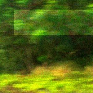 20121220_284648.jpg