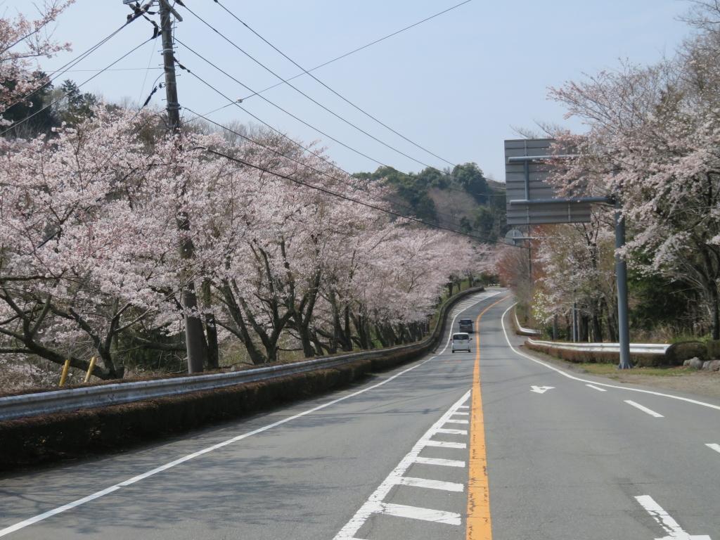 虹の郷手前2.JPG