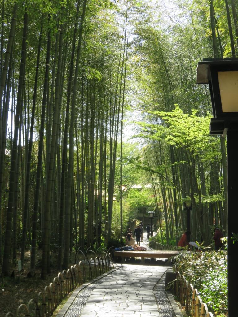修善寺「竹林の小径」