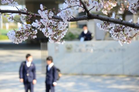 桜と生徒.JPG