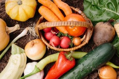 無添加 砂糖不使用の国産野菜の酵素ドリンク 野菜