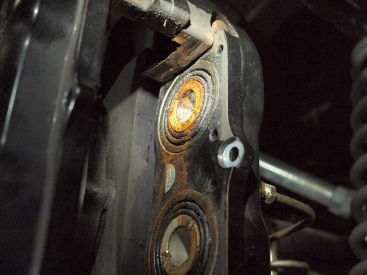 P4029504 (Custom).JPG