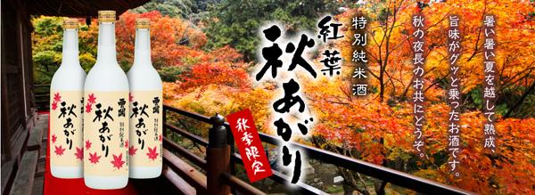 秋の夜長のお供。西の関 秋上がり特別純米酒 https://yamashiroya.biz/?pid=23946863