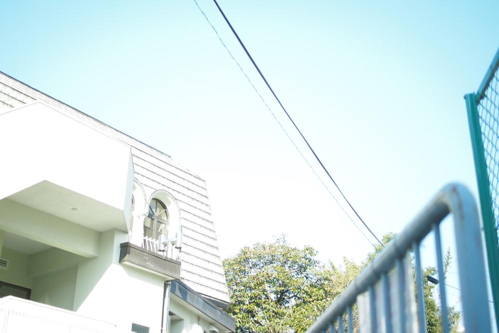 P1267001.jpg