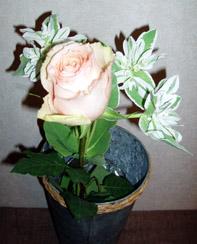 花 フラワー 求人募集
