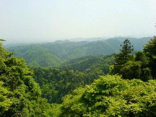 高尾山からの景色
