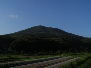 2008.09.19