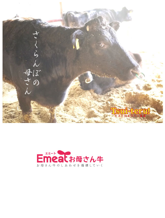 Emeat-blog-sakuranbo-11.jpg