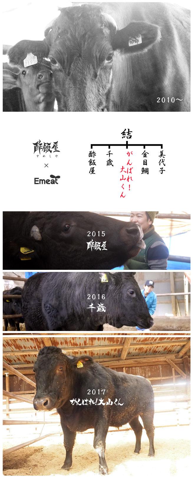 Emeat-blog-ooyama-21.jpg