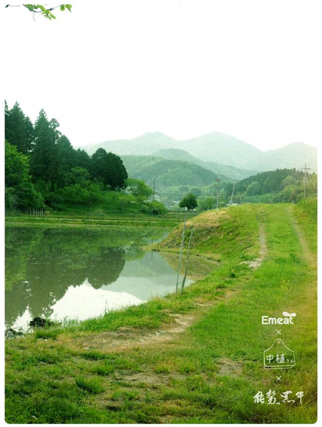 Emeat-blog-naka-07.jpg