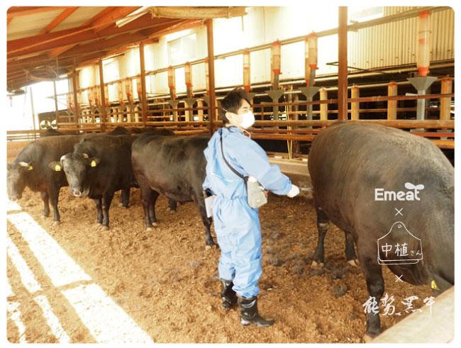 Emeat-blog-naka-10.jpg
