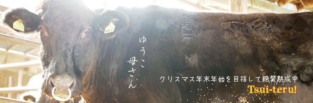 バナーゆうこ.jpg