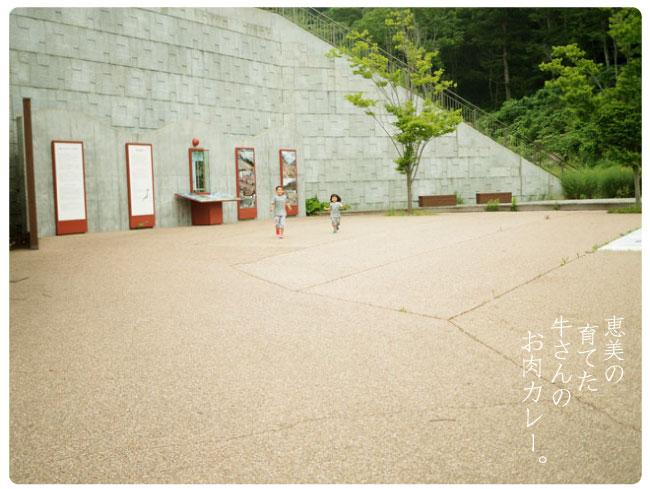 Emeat-blog-カレー20.jpg