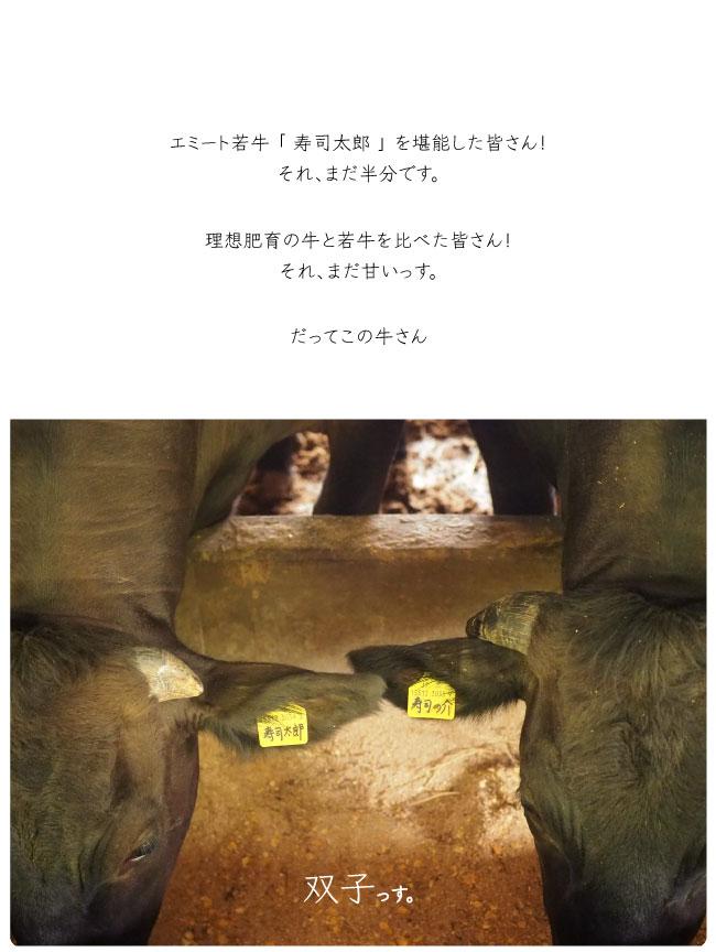 Emeat-blog-寿司之介-03.jpg
