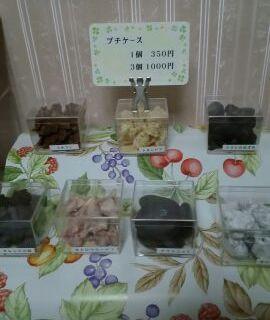 ぷちケース7種 店展示