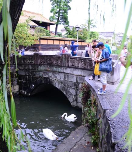 bikanchiku2.jpg