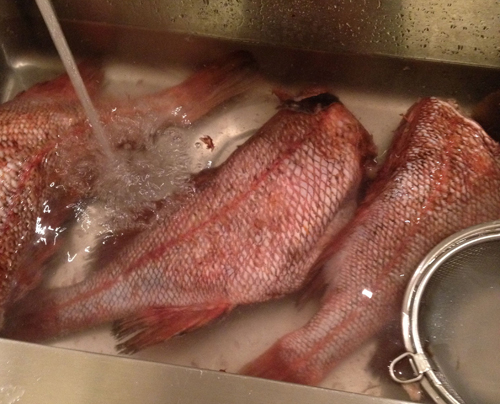 旬の魚を食べる会