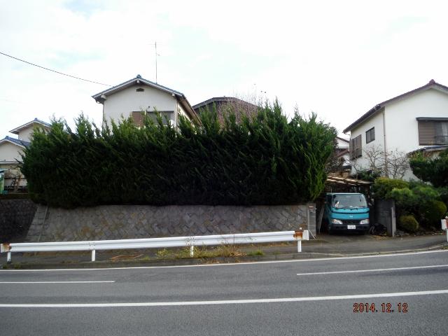 DSCF9261 (640x480).jpg