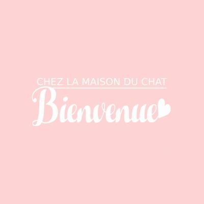フランスアンティーク雑貨 La maison du Chatのリニューアルオープン画像
