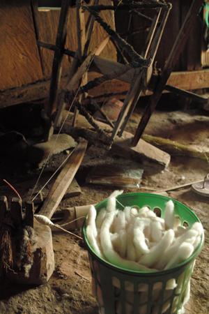 綿花から糸をつむぐ