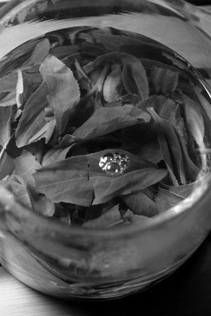 南糯山夏の薫る散茶2012年プーアル茶