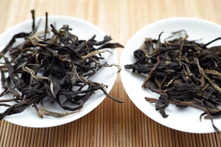 弯弓の野生茶2012年プーアル茶
